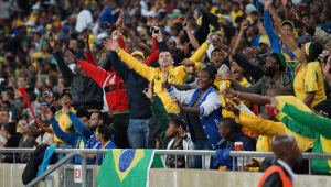 South Africa vs Brazil